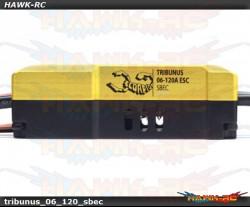 Scorpion Tribunus 06-120A (SBEC) FREE V link II Cable